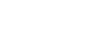 No Noise Records and Hifi logo light